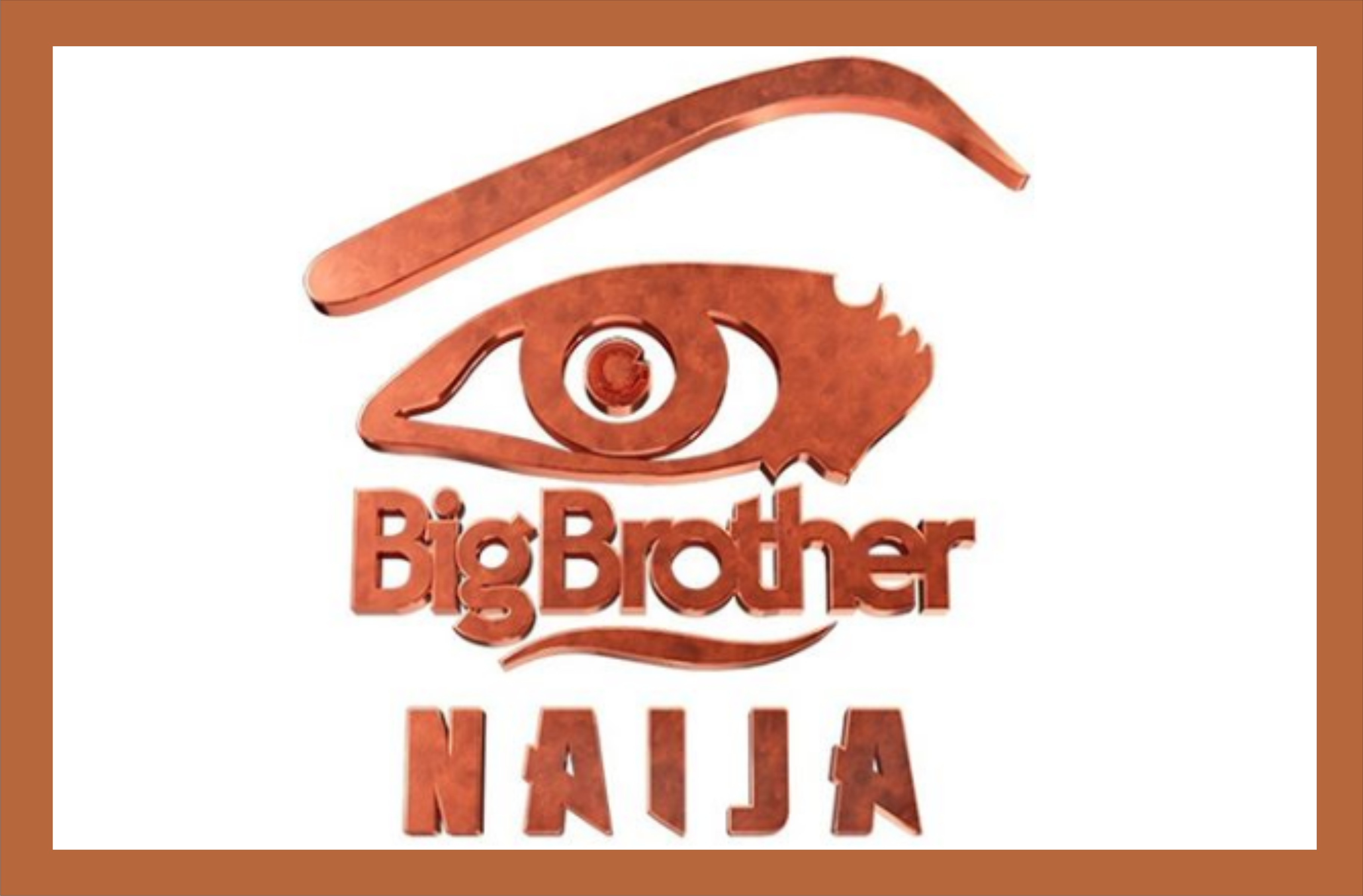 How to Watch BBNaija 2019 on GOtv, and DStv | How to Watch Big Brother Naija on Phone and Online