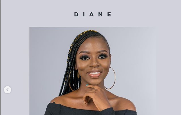 How to Vote DIANE in BBNaija 2019 for Free on Website and SMS