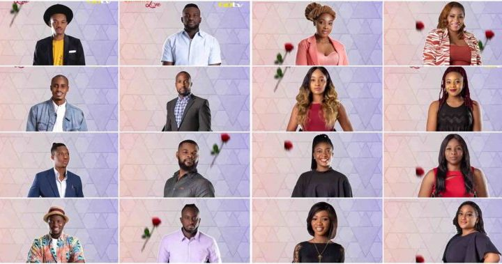 List of Ultimate Love 2020 Housemates (Guests) | Full Names| Pictures | Biography.